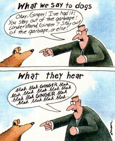 Gary Larson comic strip: What the human says and what the dog hears.